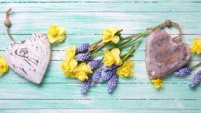Καρδιές και φρέσκα κίτρινα και μπλε λουλούδια άνοιξη στο τυρκουάζ wo Στοκ εικόνες με δικαίωμα ελεύθερης χρήσης
