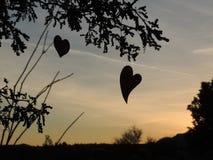Καρδιές που σκιαγραφούνται από τον ήλιο ρύθμισης - κίτρινο Στοκ Φωτογραφίες