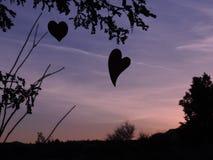 Καρδιές που σκιαγραφούνται από τον ήλιο ρύθμισης Στοκ Εικόνες