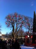 Καρδιές σε ένα δέντρο Στοκ Εικόνα