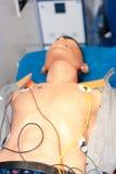 καρδιοπνευμονική νεκρανάσταση Στοκ Φωτογραφίες