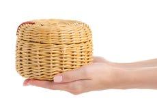 Κασετίνα μιας αμπέλου σε ένα χέρι Στοκ φωτογραφίες με δικαίωμα ελεύθερης χρήσης