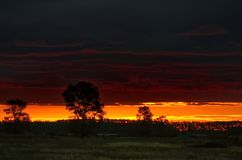 Κατάπληξη sunsets στις στέπες του Καζακστάν Στοκ Εικόνες