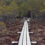 Κατάπληξη άποψης φύσης Στοκ εικόνα με δικαίωμα ελεύθερης χρήσης