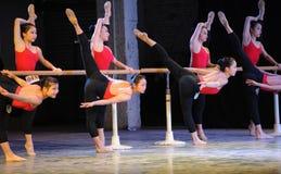 Κατάρτιση για το μπάρα-βασικό εκπαιδευτικό μάθημα χορού Στοκ εικόνες με δικαίωμα ελεύθερης χρήσης