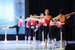 Κατάρτιση για το μπάρα-βασικό εκπαιδευτικό μάθημα χορού Στοκ Εικόνες