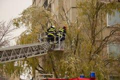 κατάρτιση εθελοντών πυροσβεστών εθελοντών πυροσβεστών ενέργειας Στοκ Εικόνα