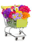 κατάστημα απεικόνισης λουλουδιών smellcomp Στοκ Φωτογραφία