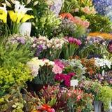 κατάστημα απεικόνισης λουλουδιών smellcomp Στοκ φωτογραφία με δικαίωμα ελεύθερης χρήσης
