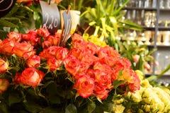 κατάστημα απεικόνισης λουλουδιών smellcomp Στοκ Εικόνες