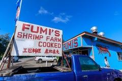 Κατάστημα γαρίδων σκόρδου Fumi στη βόρεια ακτή Oahu στοκ φωτογραφίες