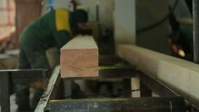 Κατάστημα για την ξυλεία ξυλουργικής απόθεμα βίντεο
