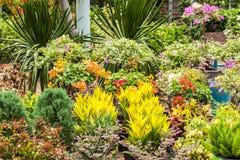Κατάστημα κήπων στοκ φωτογραφίες