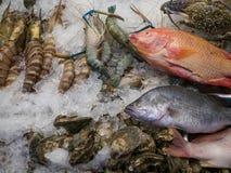 Κατάστημα οδών με τα φρέσκα θαλασσινά Στοκ Εικόνες