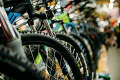Κατάστημα ποδηλάτων, σειρές των νέων ποδηλάτων, αθλητικό κατάστημα κύκλων Στοκ Εικόνα