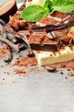 Κατάταξη των λεπτών σοκολατών και των πραλινών με τη φρέσκια μέντα Στοκ εικόνα με δικαίωμα ελεύθερης χρήσης