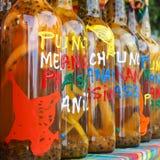 Κατάταξη των μπουκαλιών rhum στην αγορά, τακτοποιημένο σχήμα Στοκ Φωτογραφίες