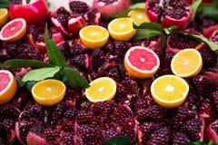 Κατάταξη των φρούτων Στοκ Εικόνες