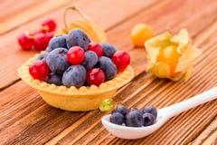 Κατάταξη fruity tarts Στοκ φωτογραφία με δικαίωμα ελεύθερης χρήσης