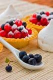 Κατάταξη fruity tarts Στοκ εικόνες με δικαίωμα ελεύθερης χρήσης