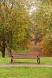 Κατάλληλος πάγκος σε ένα πάρκο με τα δέντρα φθινοπώρου στοκ φωτογραφίες