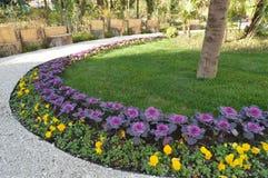 4 Κατά μήκος της αλέας αυξάνεται τα κίτρινα και ρόδινα λουλούδια στοκ εικόνες με δικαίωμα ελεύθερης χρήσης