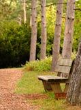 κατά μήκος του μονοπατιού πάρκων πάγκων στοκ εικόνες με δικαίωμα ελεύθερης χρήσης