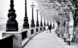 κατά μήκος του περιπάτου του Λονδίνου Τάμεσης Στοκ Εικόνες