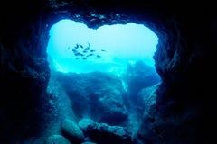 Κατάδυση σπηλιών Στοκ φωτογραφίες με δικαίωμα ελεύθερης χρήσης