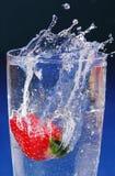 καταβρέξτε τη φράουλα Στοκ φωτογραφία με δικαίωμα ελεύθερης χρήσης