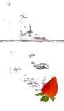 καταβρέχοντας φράουλα Στοκ φωτογραφία με δικαίωμα ελεύθερης χρήσης