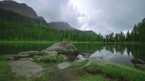 Καταδίωξη στην πράσινη χλόη της όχθης της λίμνης Passo Di SAN Pellegrino σε Trentino απόθεμα βίντεο