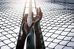 Καταθλιπτικός, πρόβλημα, βοήθεια και πιθανότητα Οι μάταιες γυναίκες αυξάνουν παραδίδουν το φράκτη αλυσίδα-συνδέσεων ζητούν τη βοή Στοκ Φωτογραφία