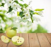 κατανάλωση έννοιας υγιής καρποί μήλων πράσινοι Στοκ εικόνα με δικαίωμα ελεύθερης χρήσης
