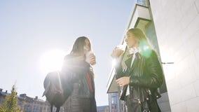 Κατανάλωση δύο νέων κοριτσιών του κρύου φρέσκου χυμού περπατώντας υπαίθρια την ηλιόλουστη θερμή ημέρα Καλύτερες φίλες, τρόπος ζωή απόθεμα βίντεο