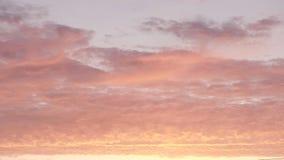 Καταπληκτικά σύννεφα καραμελών ανατολής zephyr νόστιμα του τρυφερού ρόδινου χρώματος το πρωί απόθεμα βίντεο