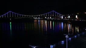 Καταπληκτική άποψη σκοτεινό megalopolis που φωτίζεται με τα ζωηρόχρωμα φω'τα τη νύχτα απόθεμα βίντεο