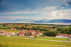 Καταπληκτική άποψη σχετικά με τους αμπελώνες Lavaux Στοκ εικόνες με δικαίωμα ελεύθερης χρήσης