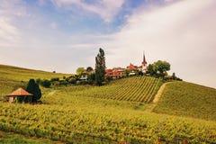 Καταπληκτική άποψη σχετικά με τους αμπελώνες Lavaux Στοκ Φωτογραφία