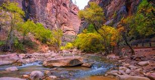 Καταπληκτική άποψη του περιπάτου όχθεων ποταμού, εθνικό πάρκο Zion, Γιούτα στοκ εικόνα