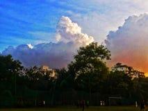 Καταπληκτική εικόνα του δέντρου και του ήλιου ουρανού στοκ εικόνα με δικαίωμα ελεύθερης χρήσης