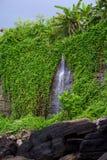 Καταπληκτικοί καταρράκτες του Μπαλί Εξωτικός προορισμός ταξιδιού Κρυμμένη GR στοκ εικόνες