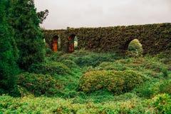 Καταπληκτικό παλαιό brickwall στο νησί του Miguel Σάο, Αζόρες Στοκ φωτογραφία με δικαίωμα ελεύθερης χρήσης