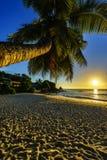 Καταπληκτικό ρομαντικό ηλιοβασίλεμα με έναν φοίνικα στον παράδεισο, Σεϋχέλλες beac Στοκ φωτογραφίες με δικαίωμα ελεύθερης χρήσης