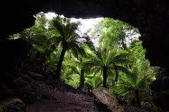 Καταπληκτικό τοπίο στην αψίδα Trowutta, Τασμανία στην Αυστραλία στοκ φωτογραφίες