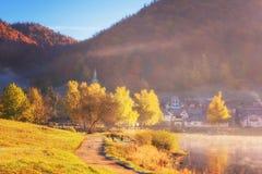 Καταπληκτικό τοπίο φθινοπώρου με την αλπική λίμνη, το χρυσούς χρωματισμένους δασώδεις βουνό και το μπλε ουρανό, υπαίθριο υπόβαθρο στοκ εικόνα με δικαίωμα ελεύθερης χρήσης
