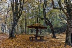 Καταπληκτικό τοπίο φθινοπώρου με την κίτρινη κοντινή πόλη διαβόλων στο βουνό Radan Στοκ φωτογραφία με δικαίωμα ελεύθερης χρήσης