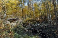 Καταπληκτικό τοπίο φθινοπώρου με την κίτρινη κοντινή πόλη διαβόλων στο βουνό Radan Στοκ Εικόνα