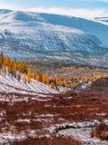 Καταπληκτικό τοπίο φθινοπώρου στα βουνά στοκ εικόνες