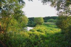 Καταπληκτικό τοπίο φύσης με μια άποψη του μικρού ποταμού Στοκ Εικόνες